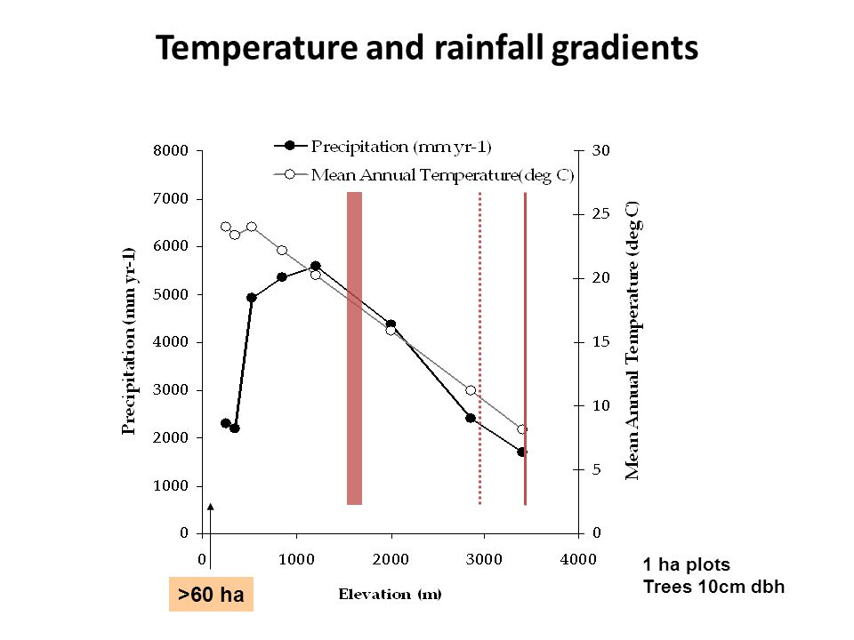 Temperature and rainfall gradients