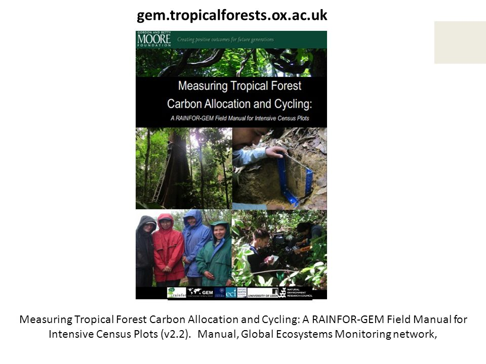 gem.tropicalforests.ox.ac.uk