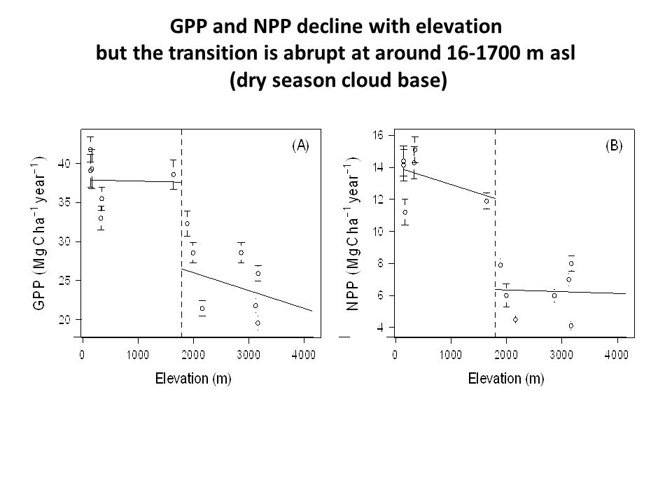 GPP and NPP decline with elevation