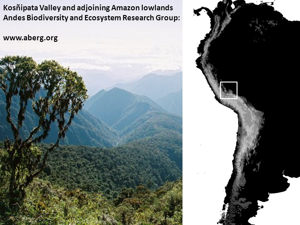 Kosñipata Valley and adjoining Amazon lowlands