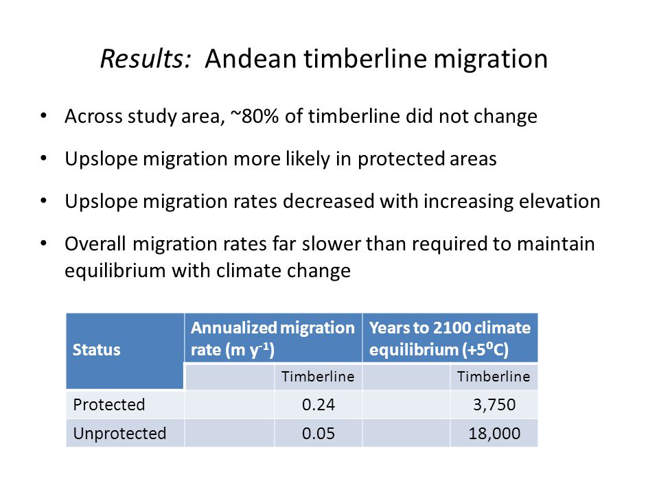 Results: Andean timberline migration