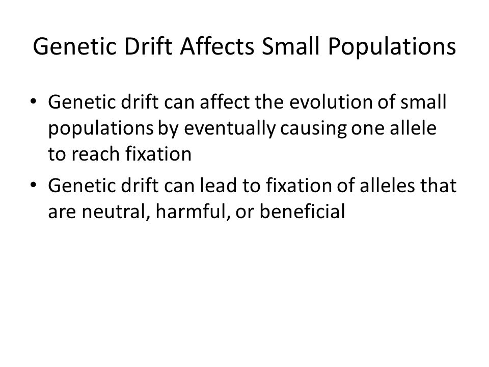 Genetic Drift Affects Small Populations