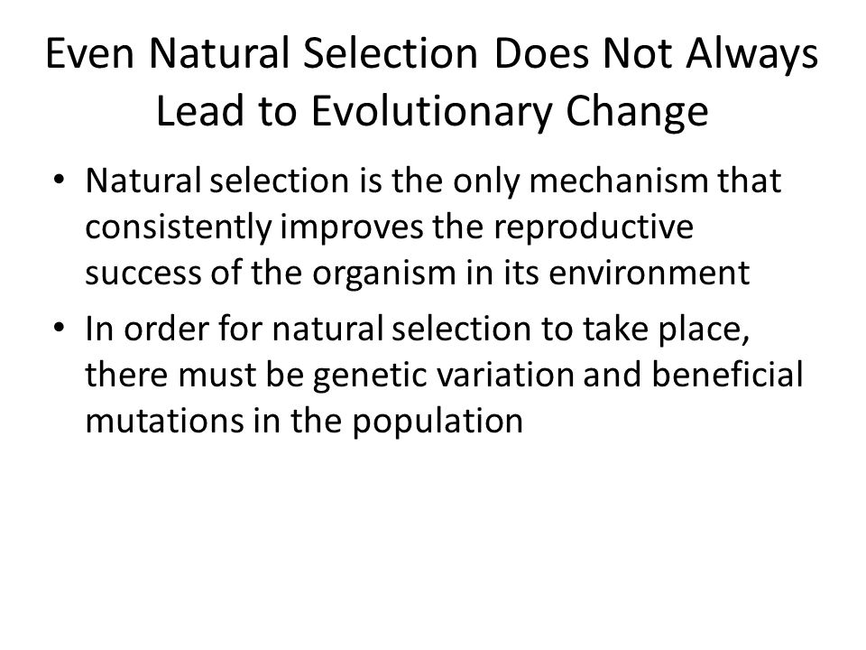 Even Natural Selection Does Not Always Lead to Evolutionary Change