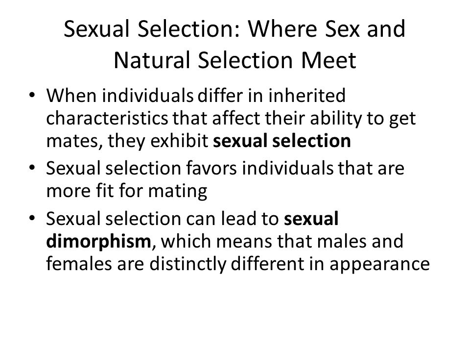 Sexual Selection: Where Sex and Natural Selection Meet