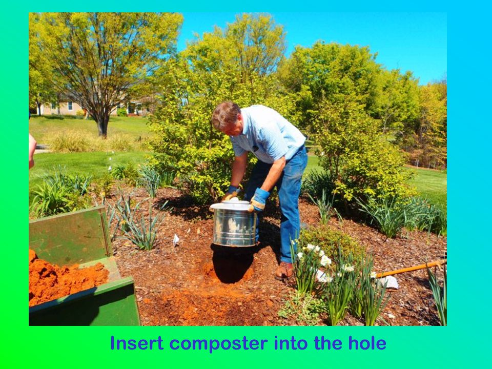 Insert composter into the hole