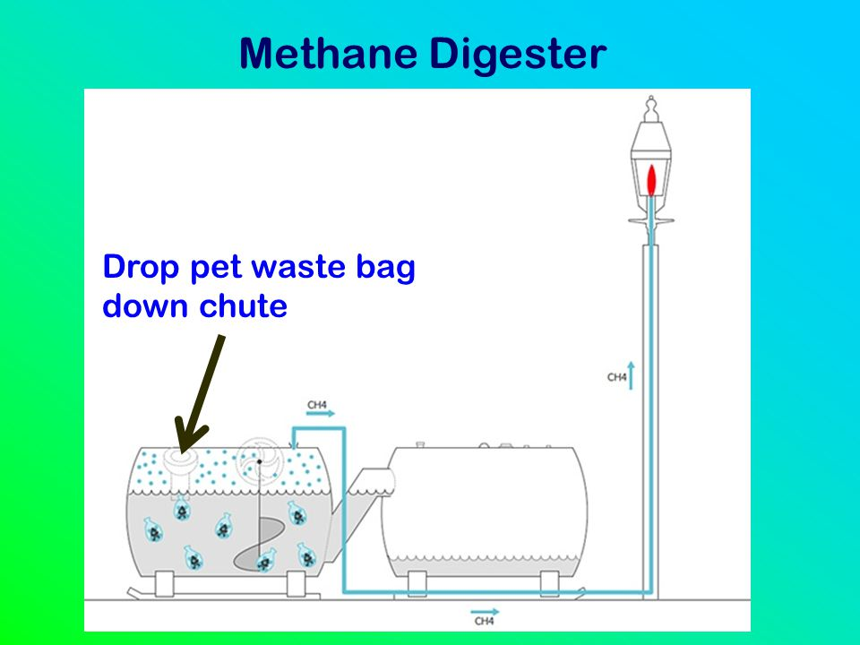 Methane Digester Drop pet waste bag down chute