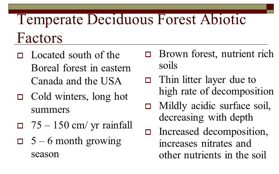 Temperate Deciduous Forest Abiotic Factors