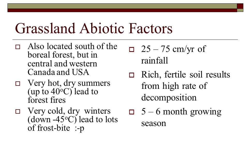 abiotic grassland features Best answer: here is some info on temperate grasslands the abiotic factors are non-biological - climate etc the biotic factors are biological - the.