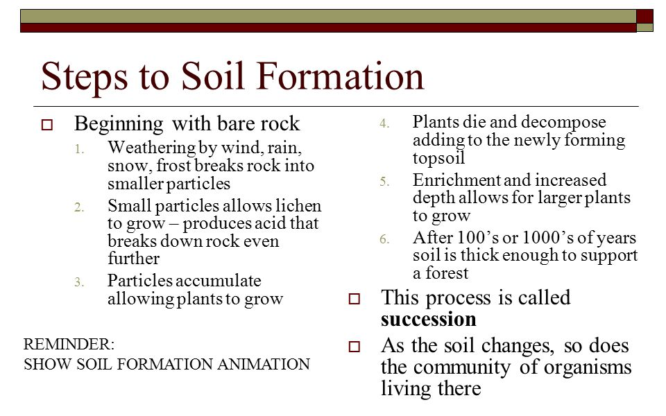 Steps to Soil Formation