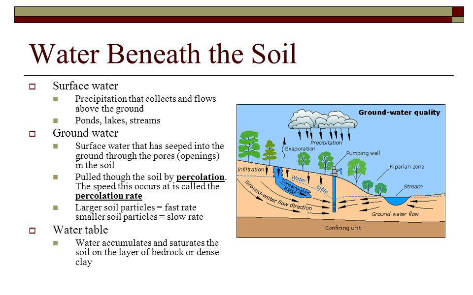 Water Beneath the Soil Surface water Ground water Water table