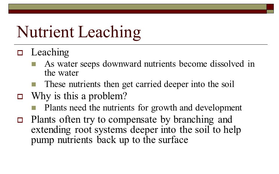 Nutrient Leaching Leaching Why is this a problem