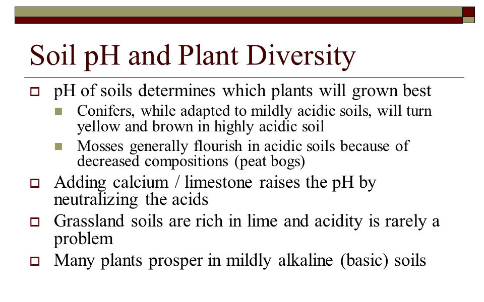 Soil pH and Plant Diversity