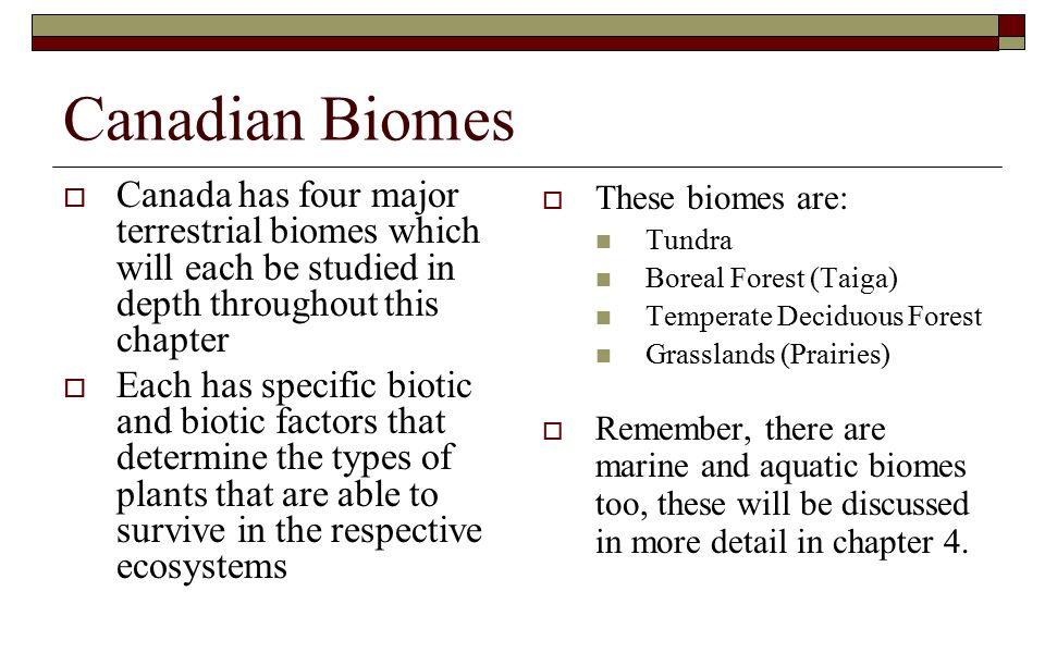 Canadian Biomes Canada has four major terrestrial biomes which will each be studied in depth throughout this chapter.
