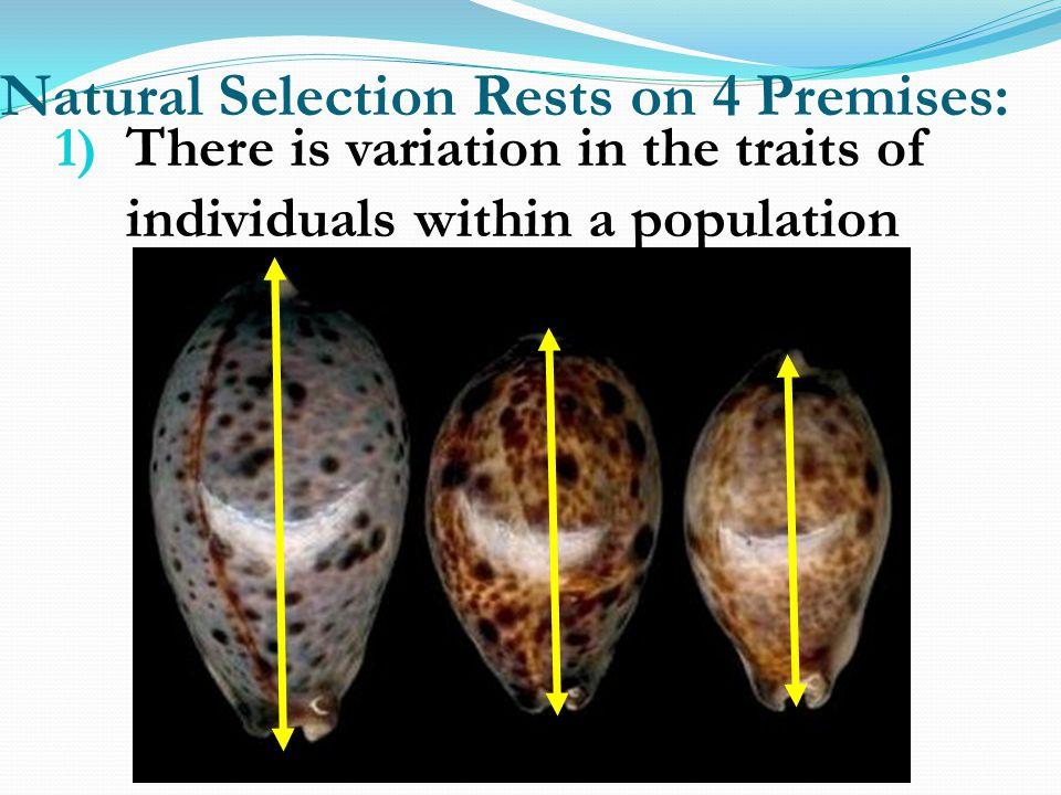 Natural Selection Rests on 4 Premises: