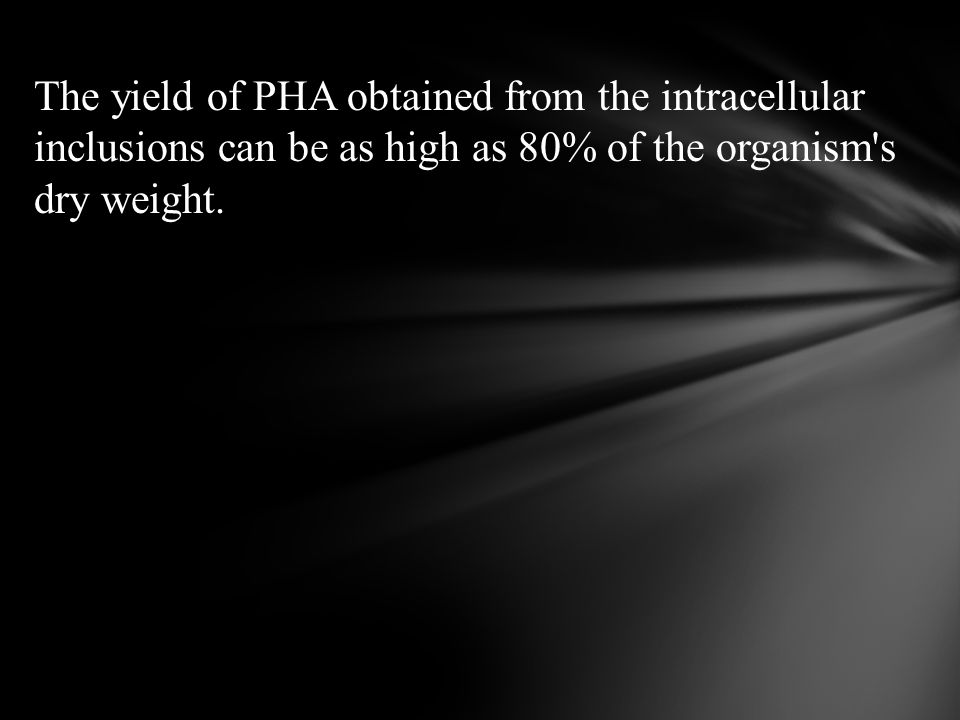 The yield of PHA obtained from the intracellular inclusions can be as high as 80% of the organism s dry weight.