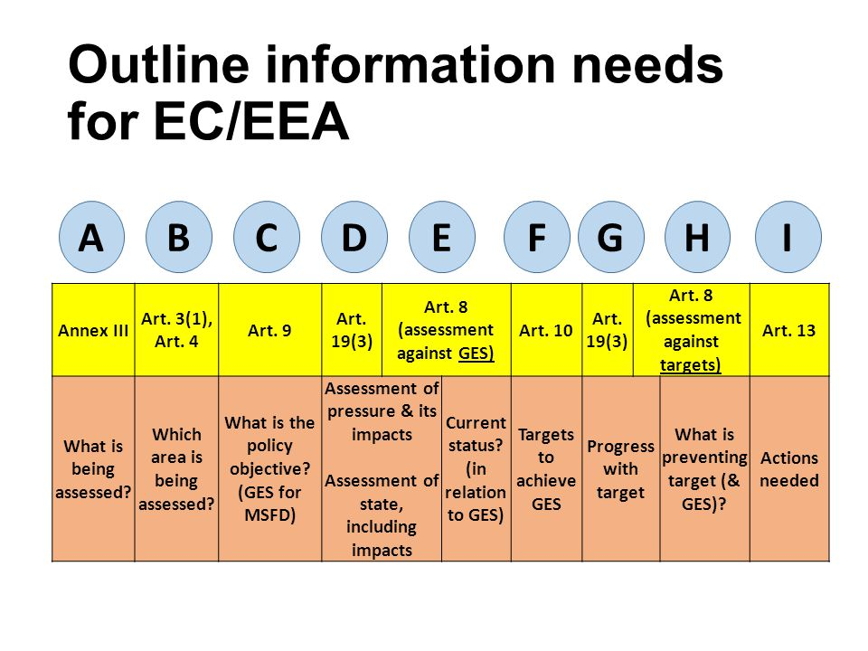 Outline information needs for EC/EEA