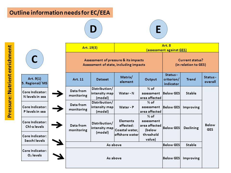 D E C Outline information needs for EC/EEA