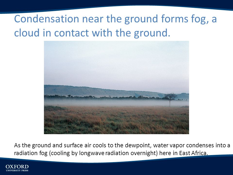 Condensation near the ground forms fog, a cloud in contact with the ground.