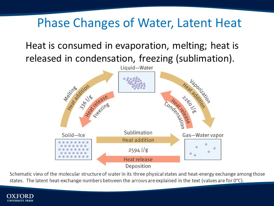 Phase Changes of Water, Latent Heat