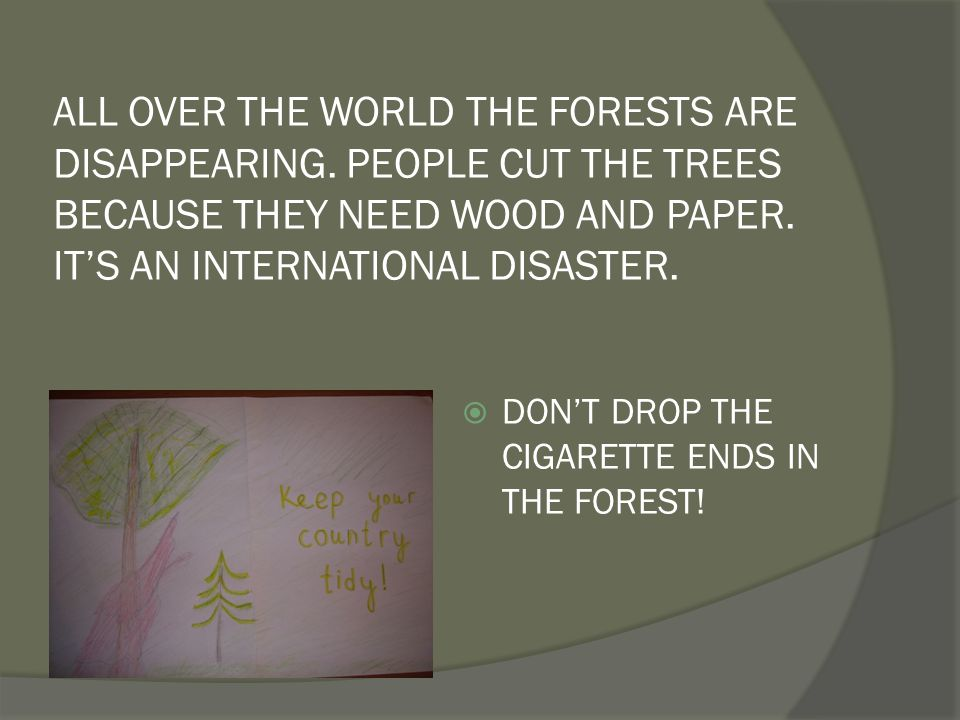 ALL OVER THE WORLD THE FORESTS ARE DISAPPEARING