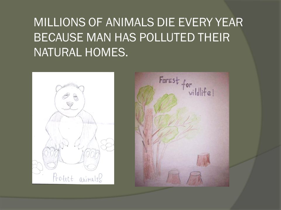 MILLIONS OF ANIMALS DIE EVERY YEAR BECAUSE MAN HAS POLLUTED THEIR NATURAL HOMES.