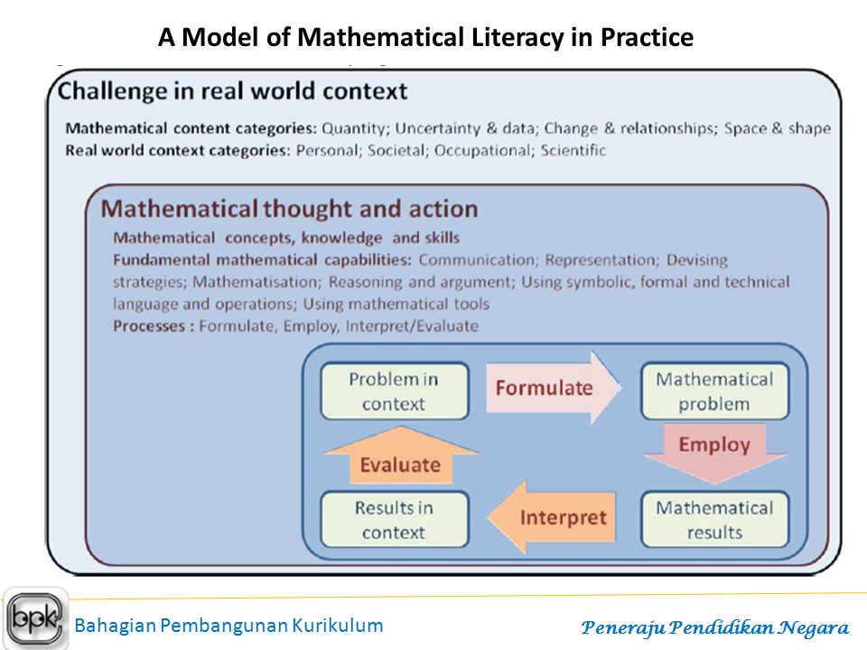 A Model of Mathematical Literacy in Practice