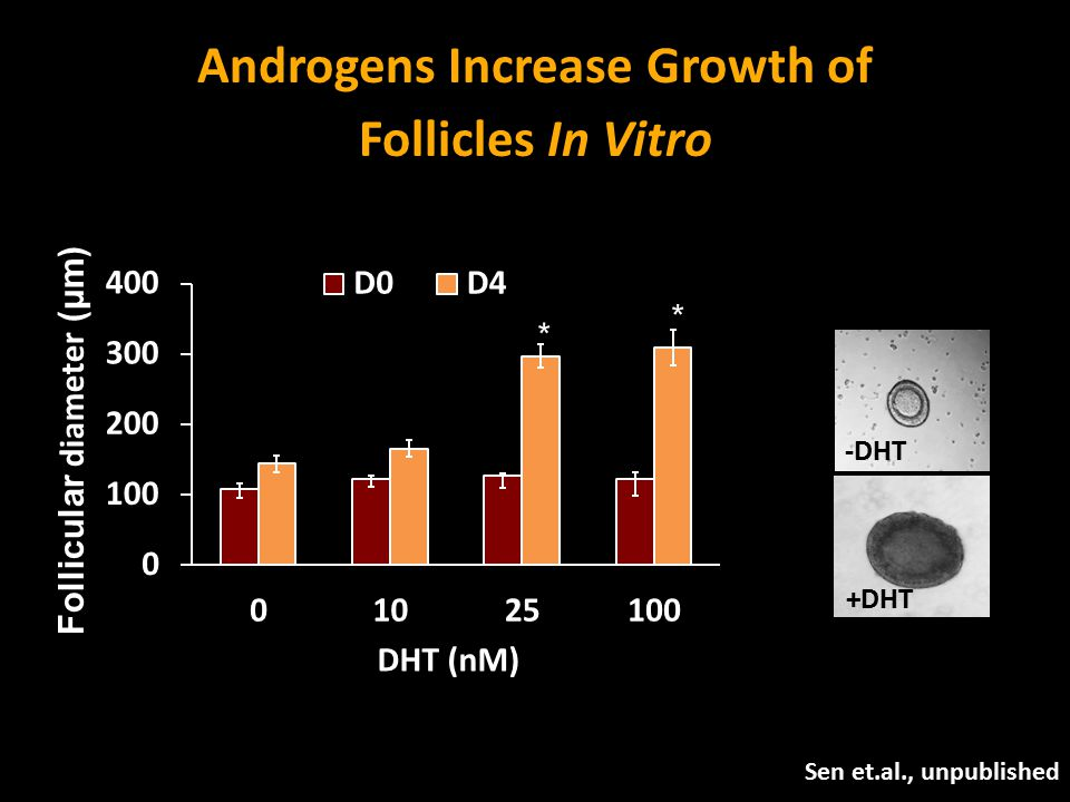Androgens Increase Growth of