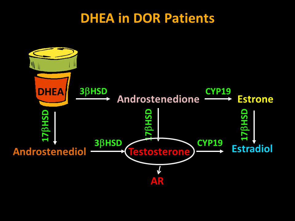 DHEA in DOR Patients DHEA Androstenedione Estrone Estradiol