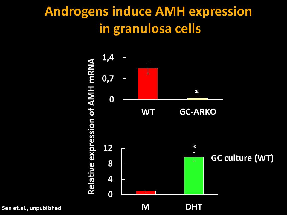 Androgens induce AMH expression Relative expression of AMH mRNA