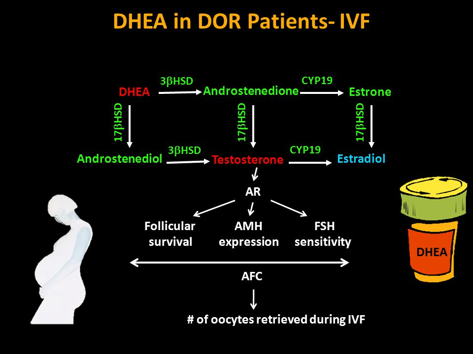 DHEA in DOR Patients- IVF