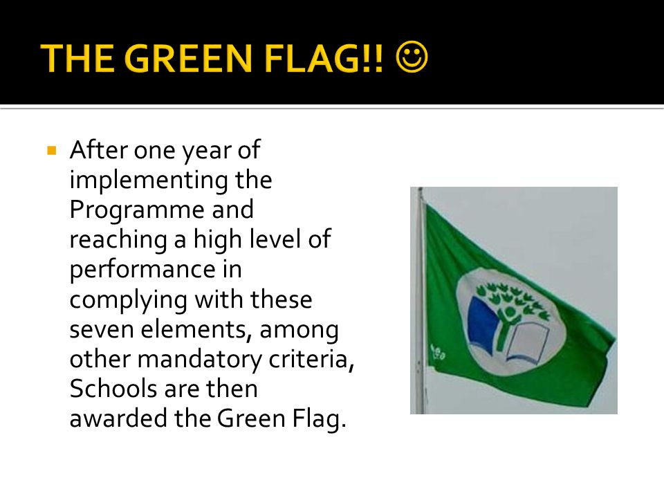 THE GREEN FLAG!! 