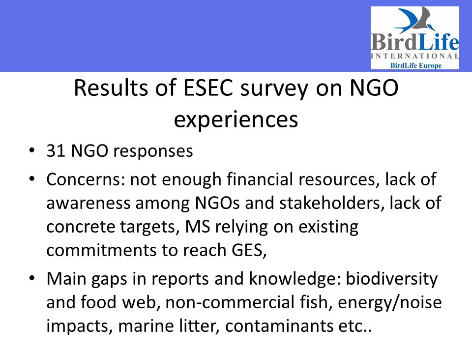 Results of ESEC survey on NGO experiences