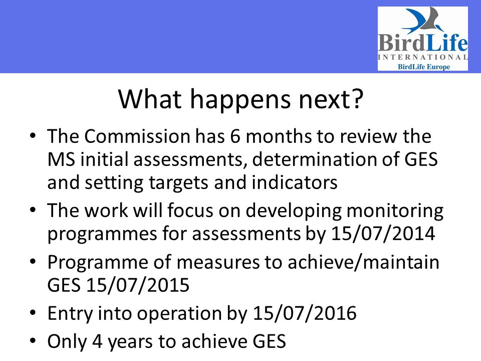 What happens next The Commission has 6 months to review the MS initial assessments, determination of GES and setting targets and indicators.