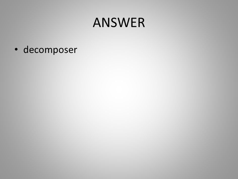 ANSWER decomposer