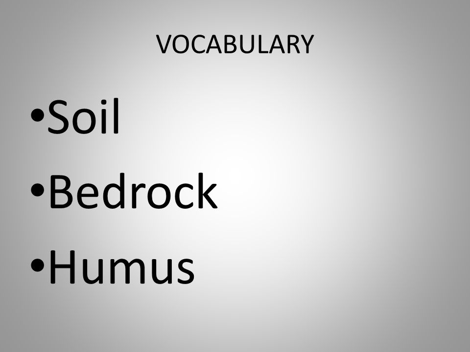 VOCABULARY Soil Bedrock Humus