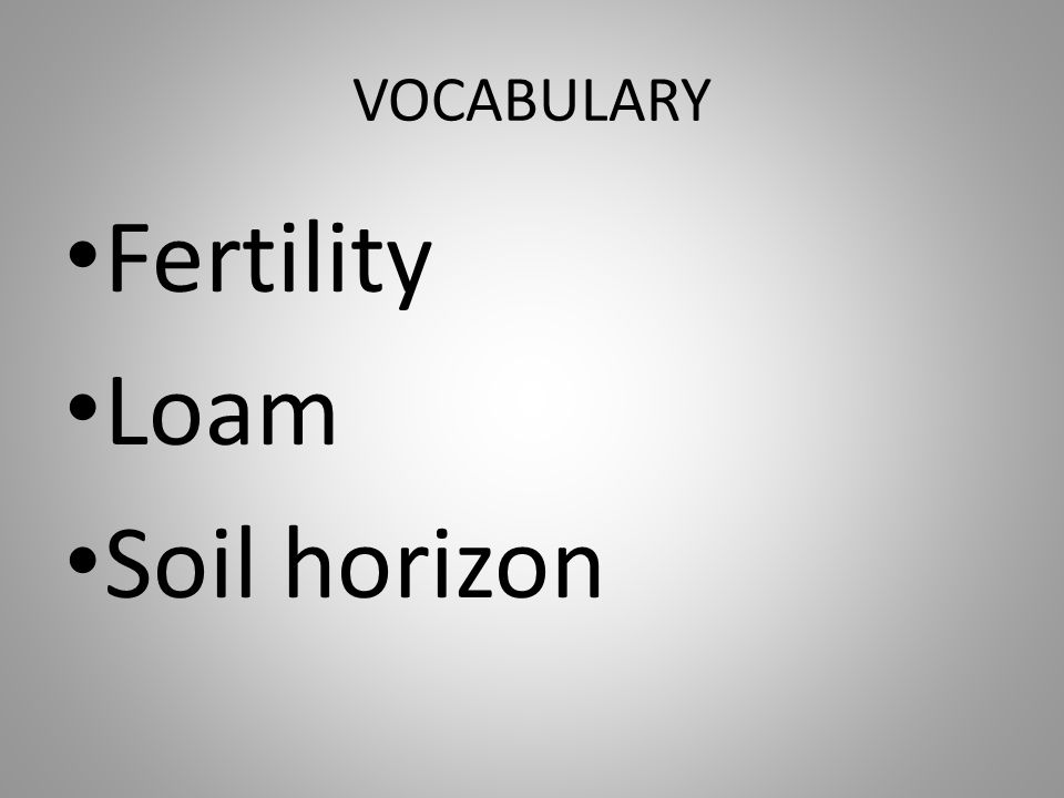 VOCABULARY Fertility Loam Soil horizon