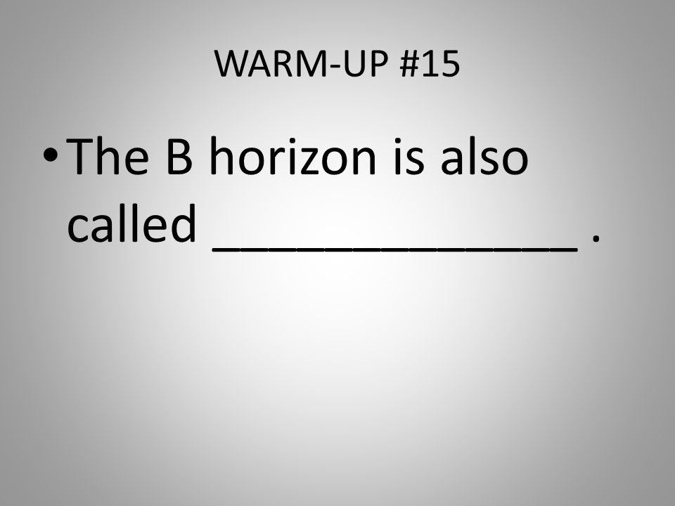 The B horizon is also called _____________ .