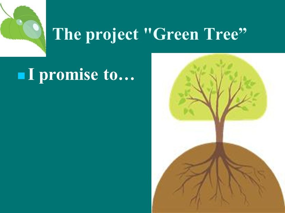The project Green Tree