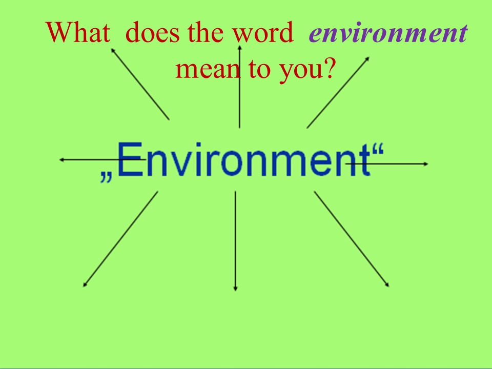 What does the word environment mean to you