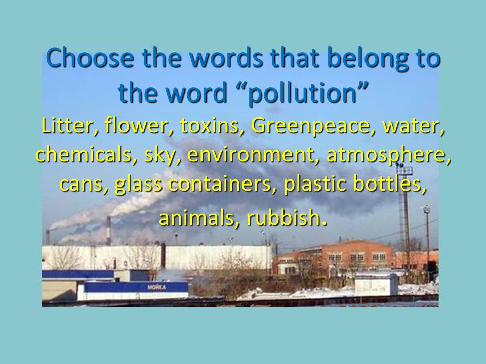 Сhoose the words that belong to the word pollution Litter, flower, toxins, Greenpeace, water, chemicals, sky, environment, atmosphere, cans, glass containers, plastic bottles, animals, rubbish.