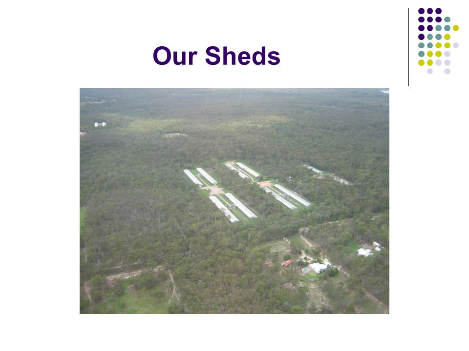 Our Sheds
