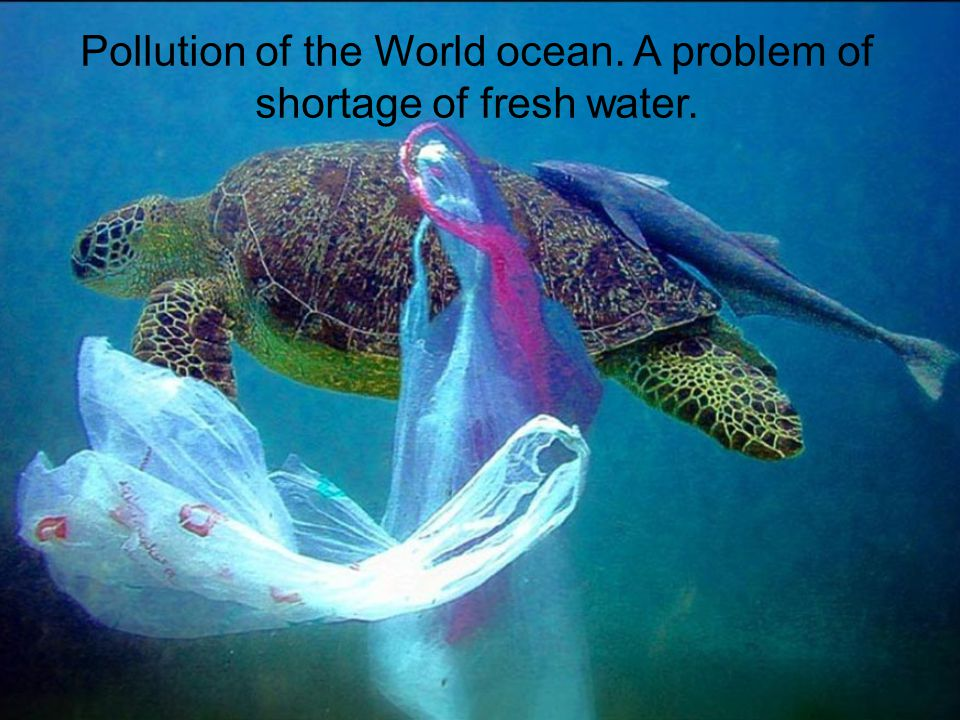 Pollution of the World ocean. A problem of shortage of fresh water.