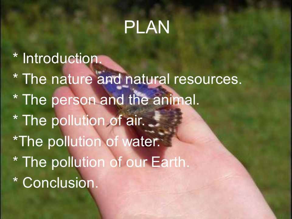PLAN * Introduction. * The nature and natural resources.