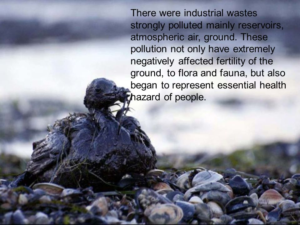 There were industrial wastes strongly polluted mainly reservoirs, atmospheric air, ground.
