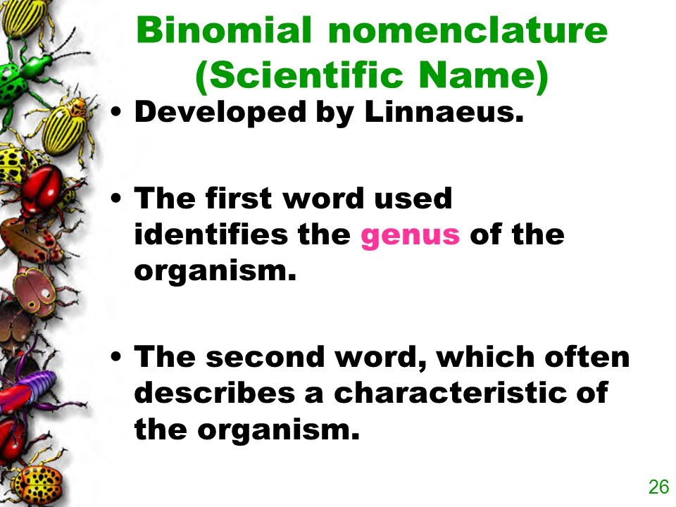 Binomial nomenclature (Scientific Name)