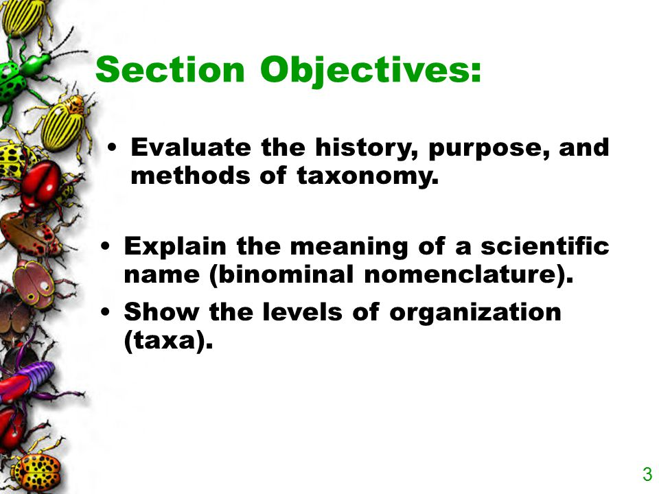 Section Objectives: Evaluate the history, purpose, and methods of taxonomy. Explain the meaning of a scientific name (binominal nomenclature).