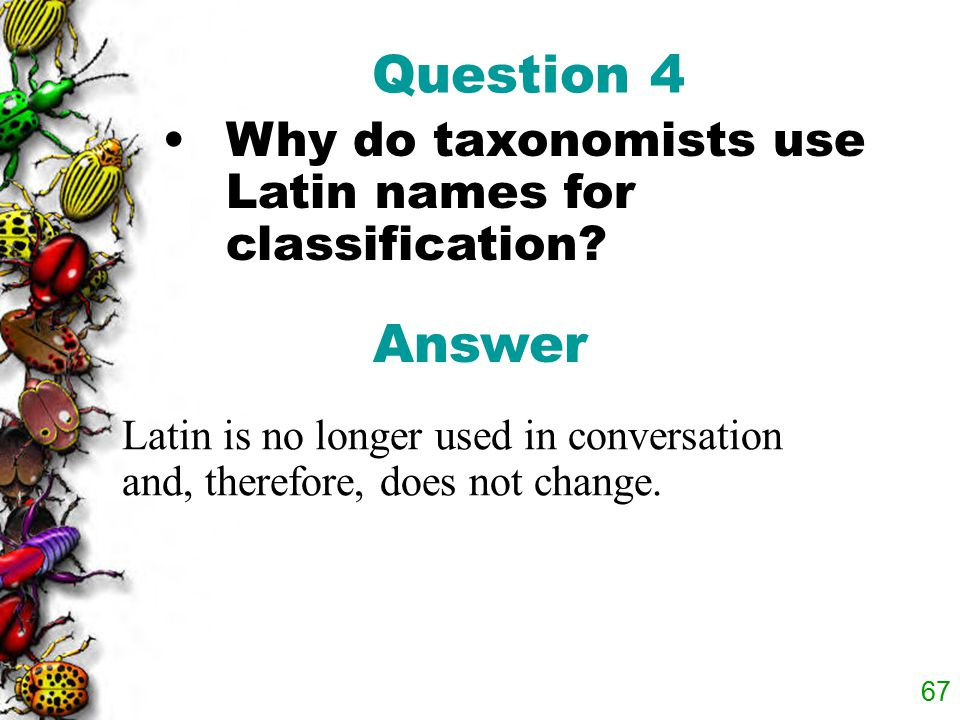 Question 4 Why do taxonomists use Latin names for classification.