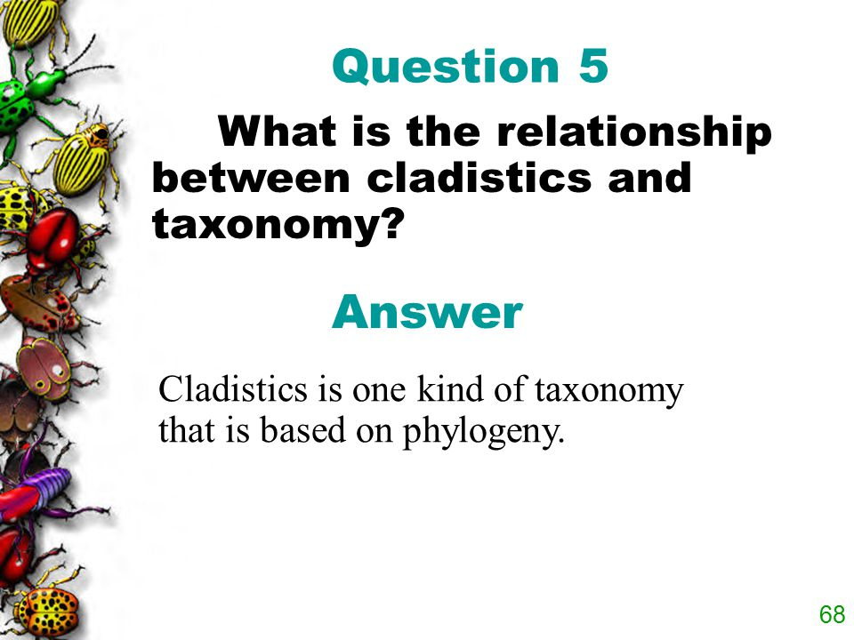 Question 5 What is the relationship between cladistics and taxonomy.