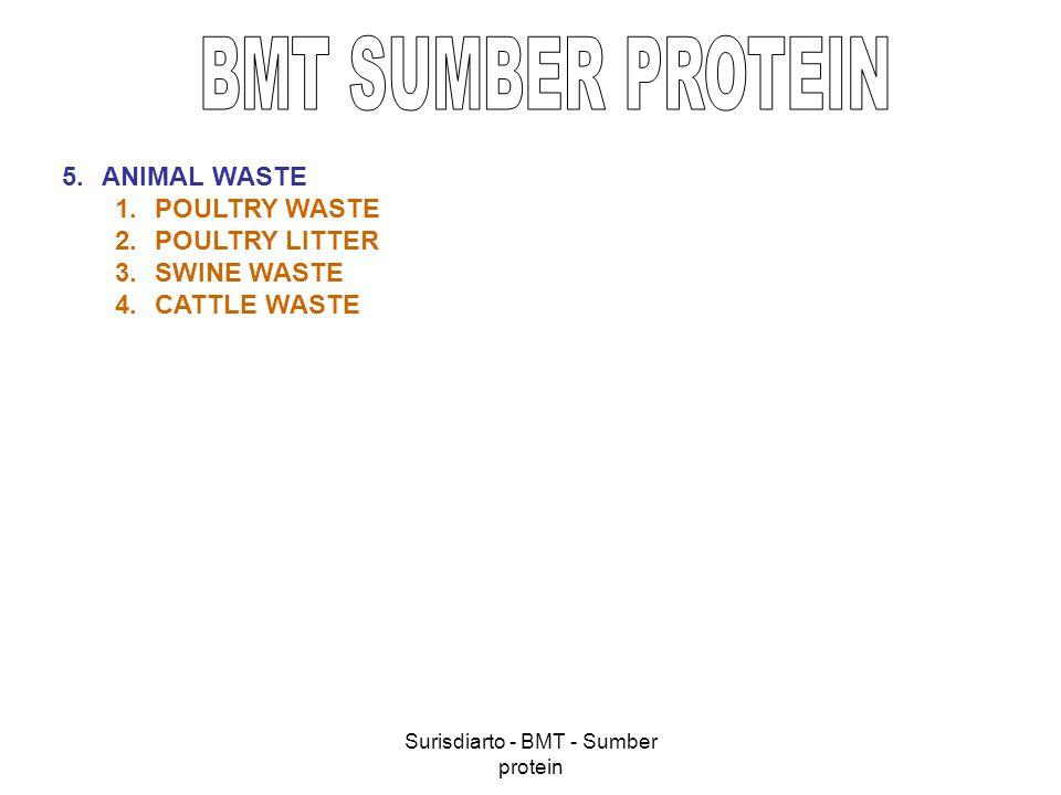 Surisdiarto - BMT - Sumber protein