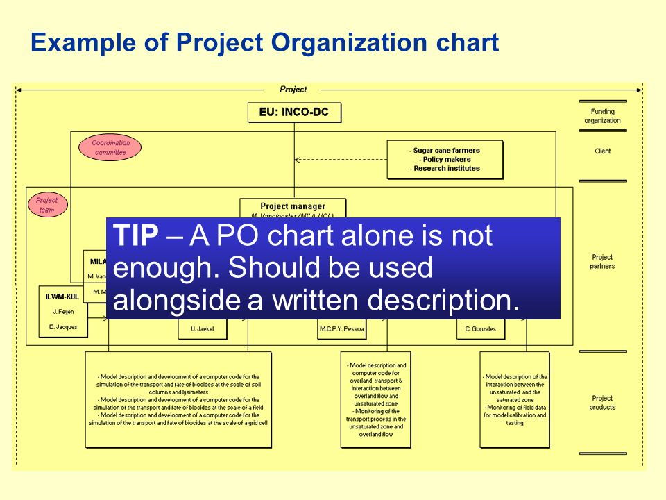 Example of Project Organization chart
